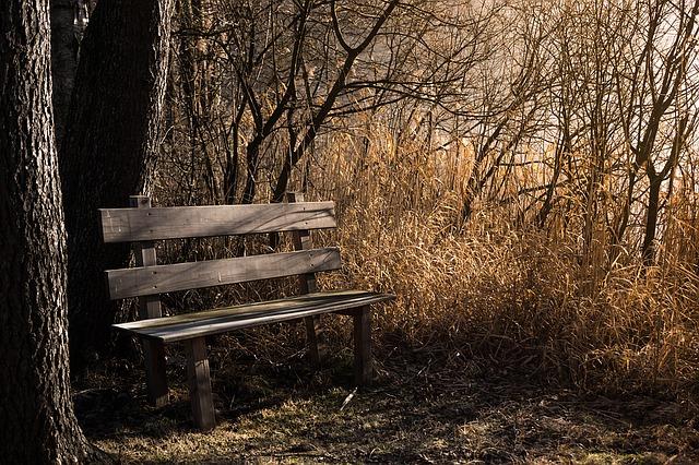 bench-1190768_640.jpg